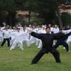 Ventennale del Gran Maestro Chen Xiaowang a Roma