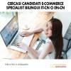 Cercasi Candidati E-Commerce Specialist IT-EN-CN