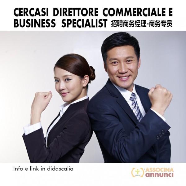 Cercasi Direttore commerciale e Business specialist 2